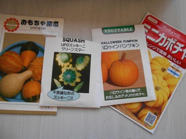 おもちゃかぼちゃの種