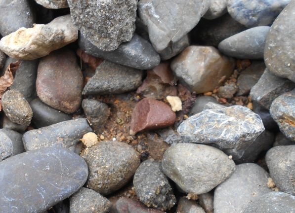砂利の下の土