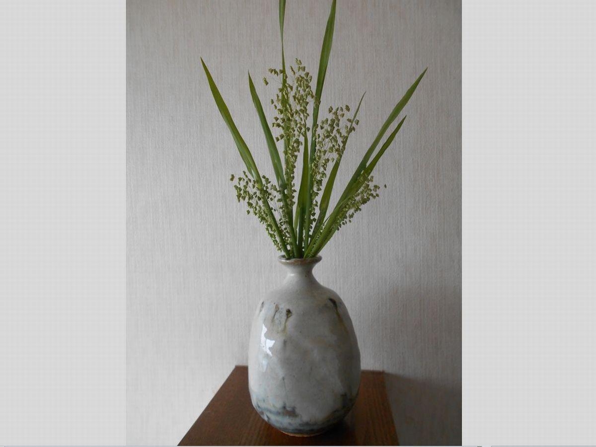 花瓶に活けたヒメコバンソウ